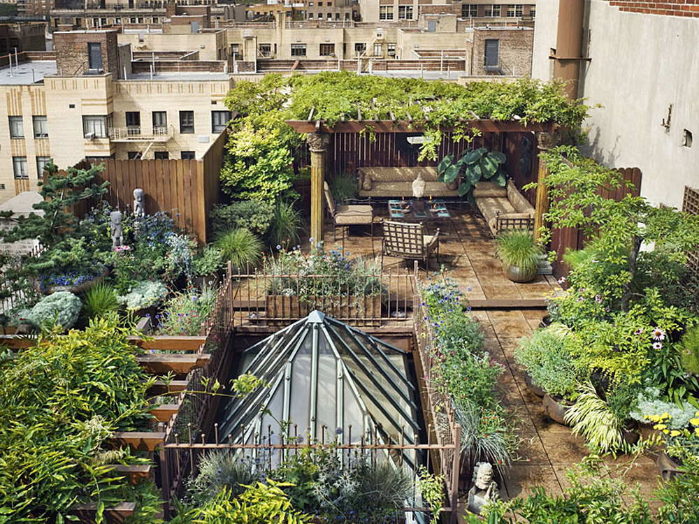 Create An Urban Jungle London Design Collective