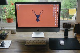 Make Your Office Greener - Desk, Apple Computer, & iPad.
