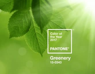 Pantone colour of the year 2017 - Greenery