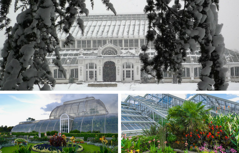 Gardens - Winter To Summer - Kew Gardens - Images Via Flickr - By Sue Lowndes, Paul Gravestock, & Ashley Coates