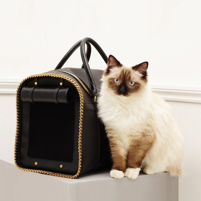 Luxury Products For Pampered Pets - Pink Velvet Dog Bed - Pet Carrier - From Stella McCartney.com