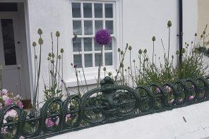 White Wooden Sash Windows With Purple Alium in garden