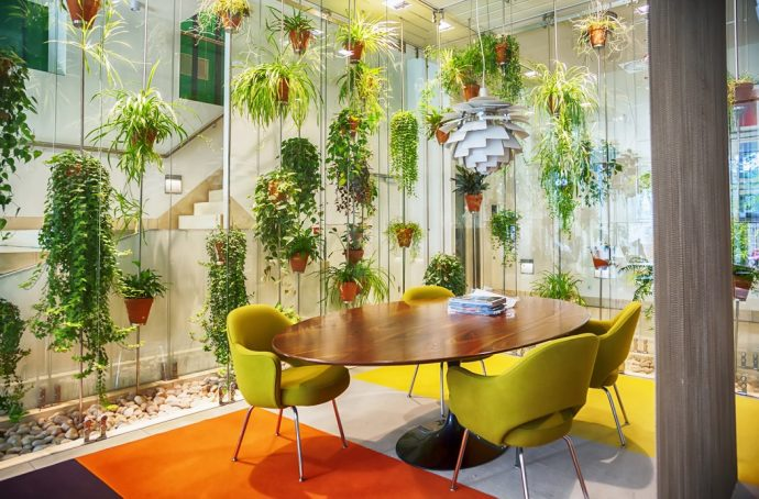 Table and chairs surrounded by hanging plants